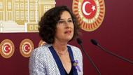 HDP'li Kerestecioğlu Büyükada'da öldürülen at sayılarındaki çelişkiyi Meclis'e taşıdı