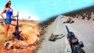 Avustralya'da katliam başladı! Keskin nişancılar öldürdükleri develerin yanında poz verdi