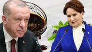Akşener'den Erdoğan'a Koronavirüs mesajı: Ölümcül virüslere karşı dut pekmezi yemek tedbir değildir