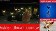 Elektrik kesildi Beşiktaş capsleri coştu