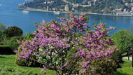 Sonunda İstanbul'a bahar havası geliyor