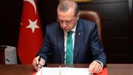 İngiliz gazetelerinin gözüyle Türkiye seçimleri