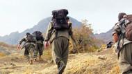 Gebze'de PKK'ya operasyon!
