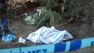 Ağaçların altında ölü bebek bulundu!