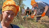 Kanuni'nin Hürrem'i tarım işçiliğinde