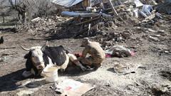 Bir köy yok oldu! Çevrimtaş köyünde sağlam ev kalmadı