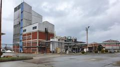 14 yıldır kapalı olan etil alkol fabrikası altın günlerini yaşıyor