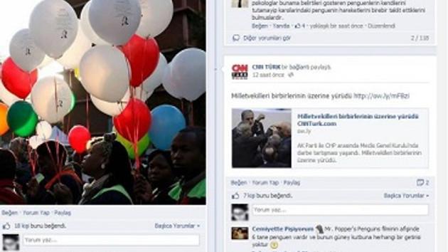 CNN Türk'ü penguenler nasıl işgal etti?