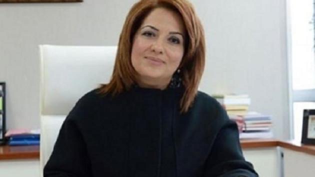 Eski AKP'li vekilin eşinin yükselişi: Felsefe öğretmenliğinden valiliğe