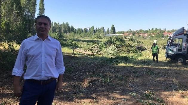 CHP'li vekil ODTÜ'deki ağaç katliamını böyle görüntüledi: Bu barbarlık...