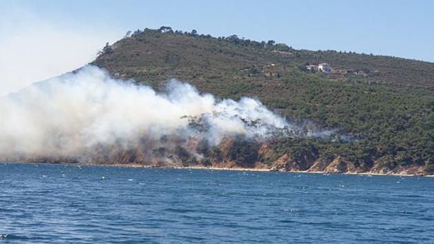 Son dakika: Burgazada'daki yangında 10 dönüm orman kül oldu