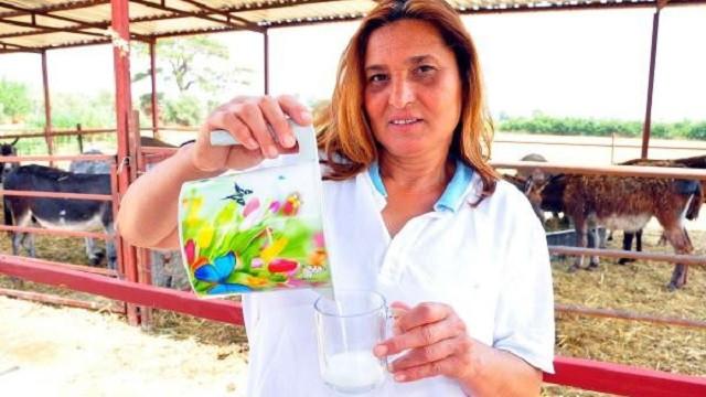 Kadın girişimci Türkan Eğriboyun'dan internetten eşek sütü satışı!
