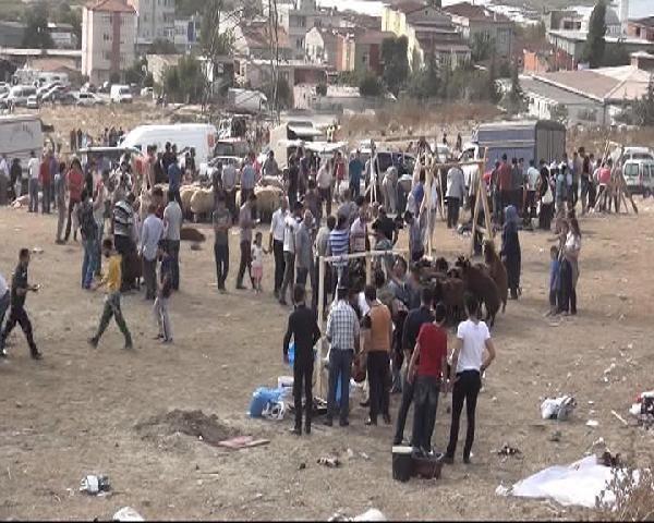 İstanbul'dan kaçak kurban kesim manzaraları