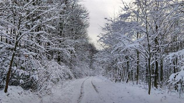 Meteoroloji'den Trakya için kuvvetli kar uyarısı