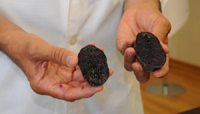 Türkiye'de ilk defa mor patates üretildi