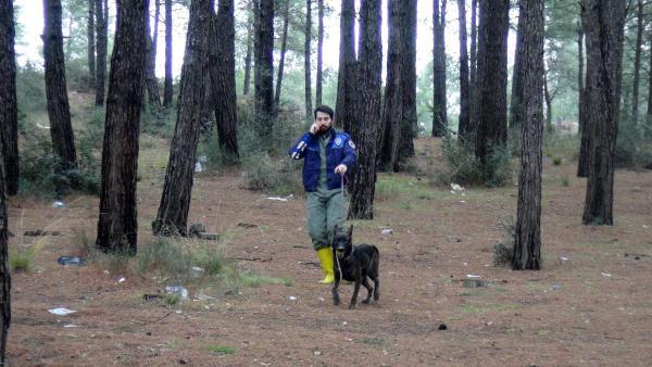 Kesik kolun bulunduğu ormanda kalça kemiği de bulundu