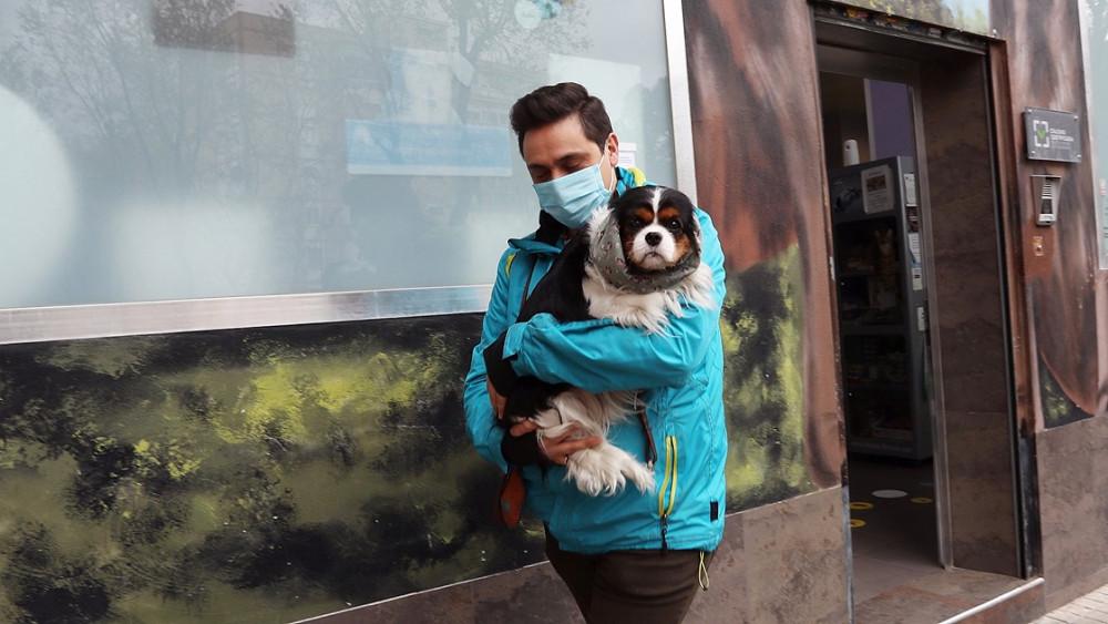 Dikkat iyi haber: Koronavirüs kedi ve köpeklerden bulaşmıyor