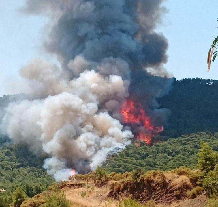 Marmaris'teki orman yangınının ilk başladığı anların görüntüleri